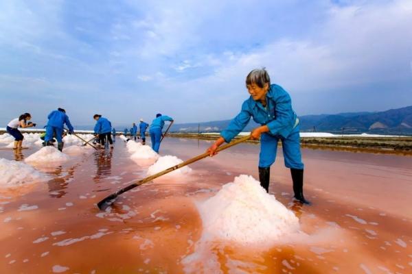 2019年,河南11选5遗漏号码盐湖古法产盐现场1