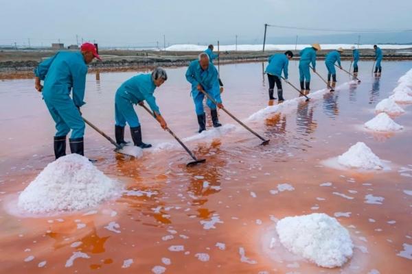 2019年,河南11选5遗漏号码盐湖古法产盐现场2