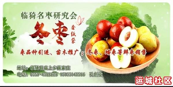 今年库存的红富士苹果价格会怎样