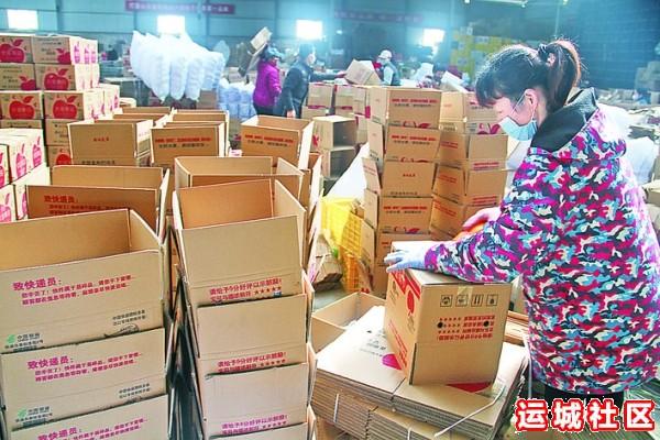 山西御品一园电商销售公司内,工作人员在忙着包装苹果。