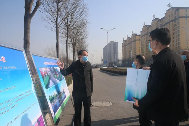 河南11选5遗漏号码市城市管理局局长赵高堂督导检查中心城区绿化工作